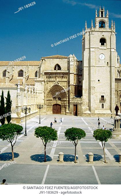 Cathedral. Palencia. Spain