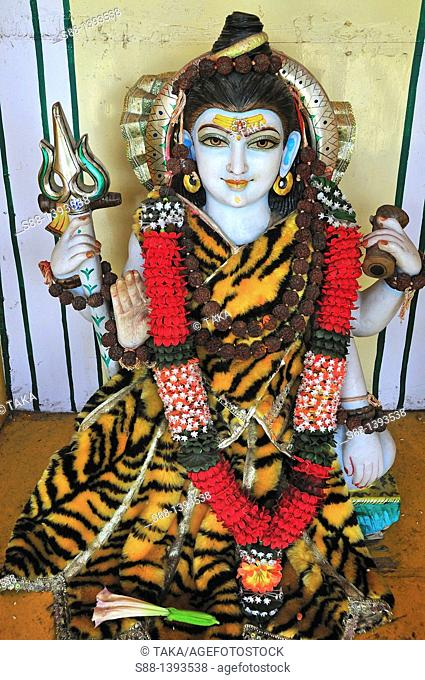 God inside of the Trayambakeshwar Temple at Lakshman Jhula in Rishikesh