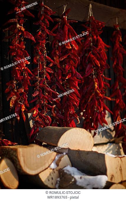 Drying red chili pepper outdoors, Baranja, Croatia