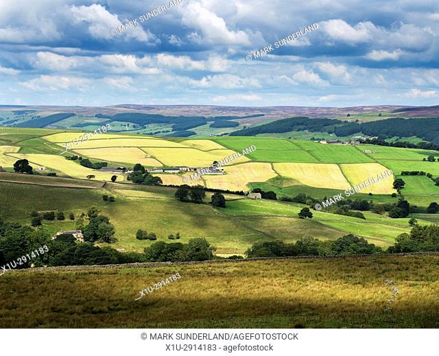Patchwork of Fields in Nidderdale with Heather in Bloom on Moors Behind Pateley Bridge Nidderdale AONB Yorkshire England