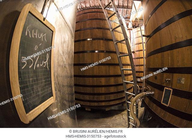 France, Caribbean, Lesser Antilles, Guadeloupe, Basse-Terre, Agricultural rum distillery Bologne, aging barrels