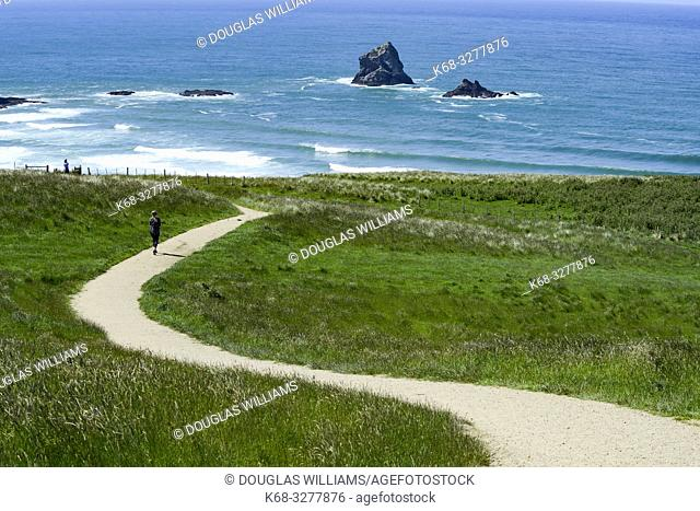 Otago Peninsula, South Island, New Zealand