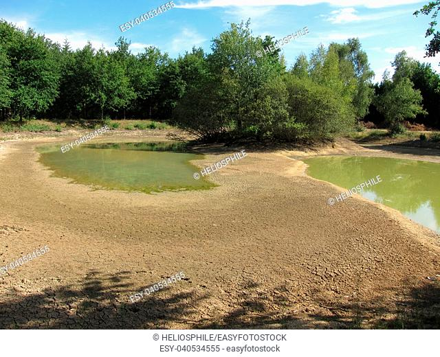 Dry pond, crackled earth in France