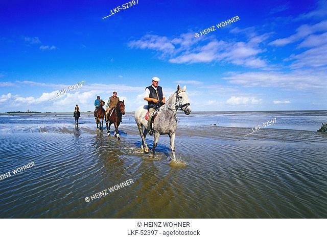 Horseriders in Tideland in front of the Island Neuwerk, National Park Hamburgisches Wattenmeer, Germany