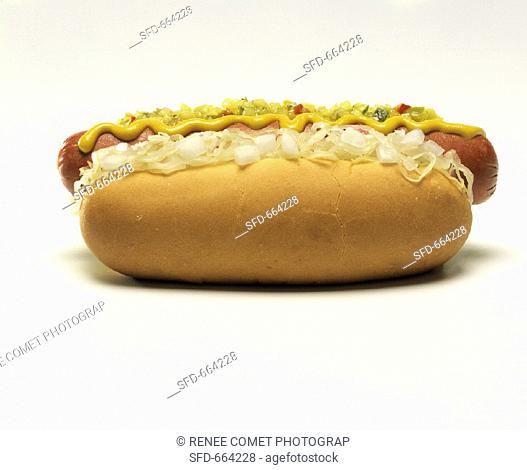 Hot Dog with Everything