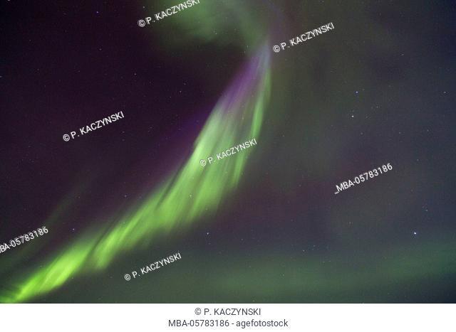 Northern Lights in winter, detail, Aurora Borealis, Pyhä-Luosto National Park, Luosto, Lapland, Finland