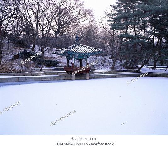 Biwon Changdeokgung Seoul South Korea