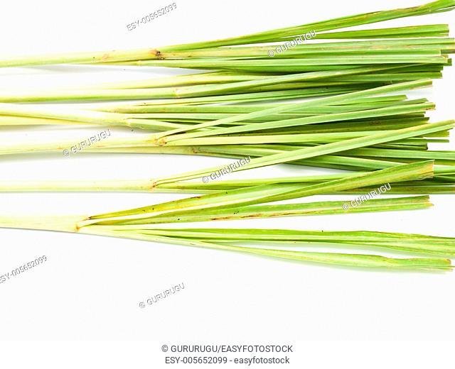 Fresh Lemongrass