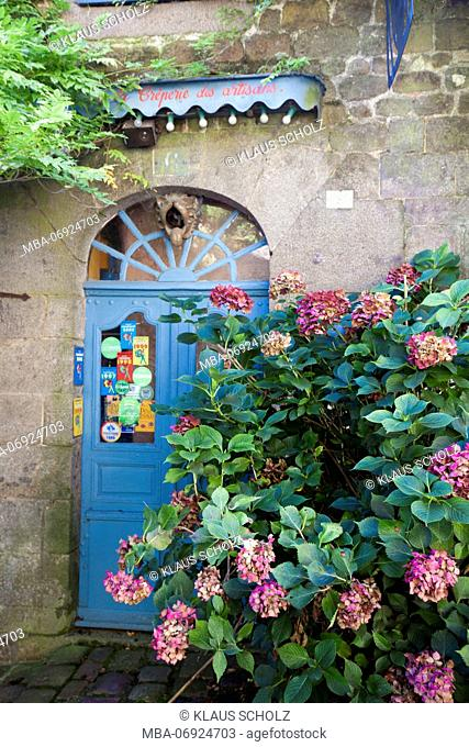 Dinan, hydrangeas in front of entrance door in the Rue de Petit Fort