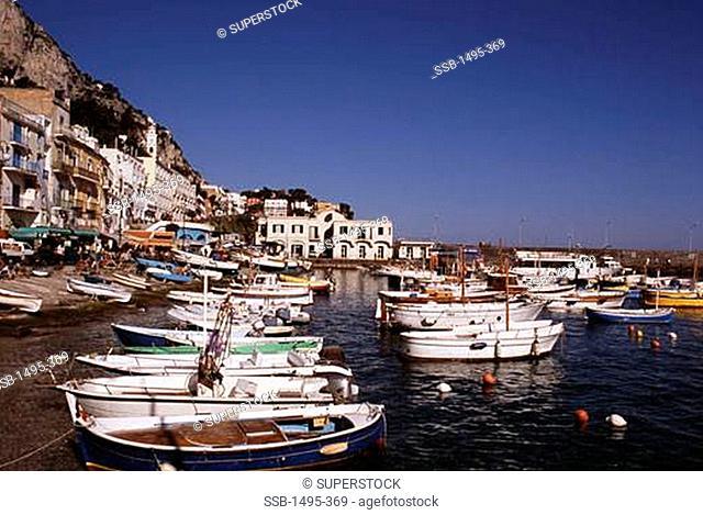 Fishing boats moored in a harbor, Marina Grande, Capri, Italy