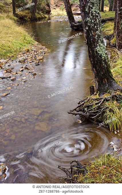 Hoz Seca river, Orea, Parque Natural del Alto Tajo, Guadalajara province, Spain