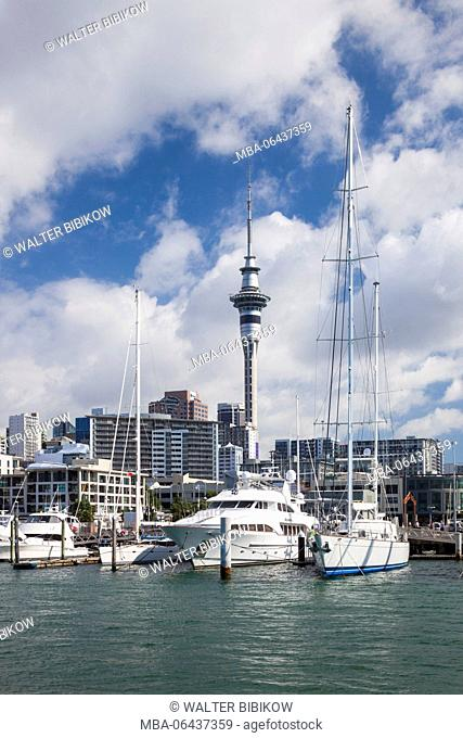 New Zealand, North Island, Auckland, skyline from Viaduct Harbour
