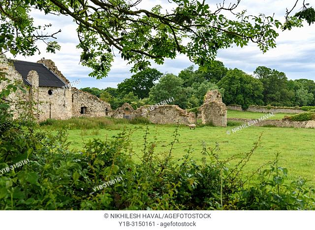 Ruins of Medieval Quarr Abbey, Isle of Wight, UK