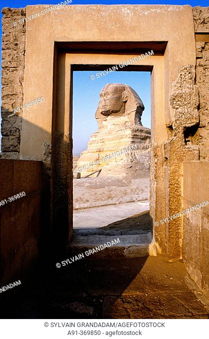 The sphinx in the pyramids area. Gizeh (Cairo suburbs). Egypt
