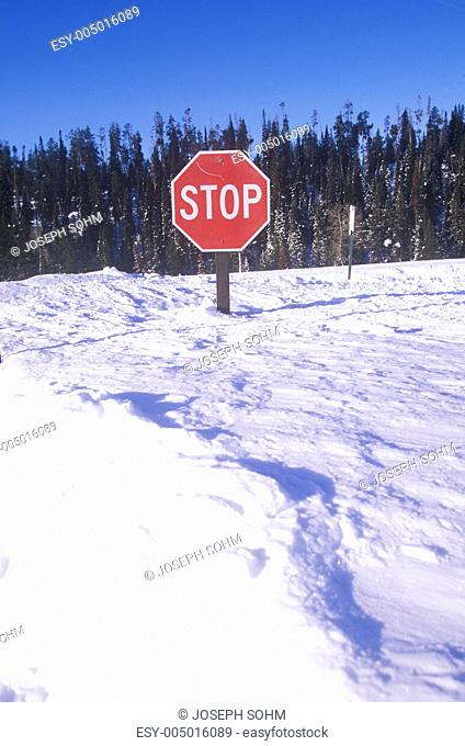 Stop sign in the snow at Grand Teton National Park, Jackson, WY