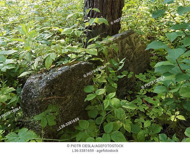 Poland. Podlasie region. Mielnik. Place of the old jewish cemetery
