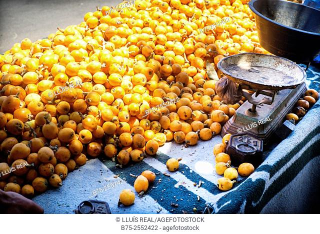 Street cart with an old scale, selling loquats. The Nouvelle Ville, Fes, Morocco, Africa