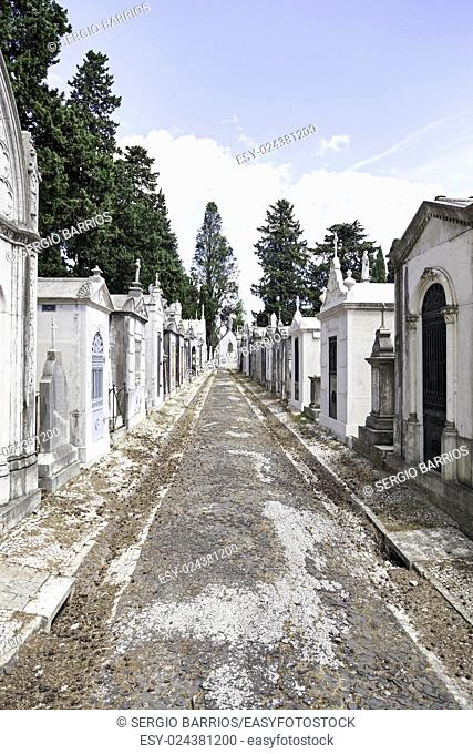 Old cemetery in the city of Lisbon, detail of a Christian tombs, ancient art in the city, holy place