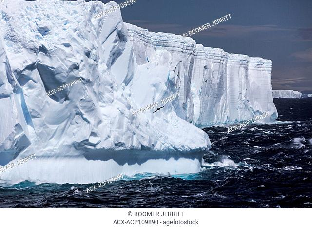 Large tabular icebergs slowly float by on the wind swept waters of Antarctic Sound, Antarctic Peninsula
