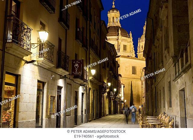 Salamanca. Castile-Leon. Spain