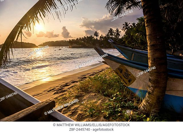Mirissa Beach, traditional Oruva fishing boats at sunset, South Coast of Sri Lanka, Southern Province, Asia