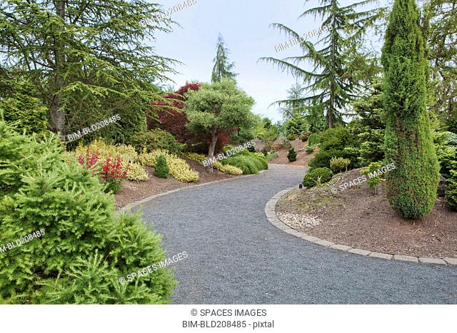 Conifer Garden in the Oregon Gardens