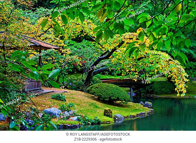 Scene from the Nitobe Japanese garden at UBC in Vancouver, Canada
