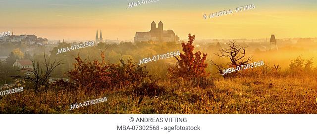 Panorama of Quedlinburg at sunrise in autumn, Burgberg with Collegiate Church St. Servatius, UNESCO World Heritage, Quedlinburg, Saxony-Anhalt, Germany