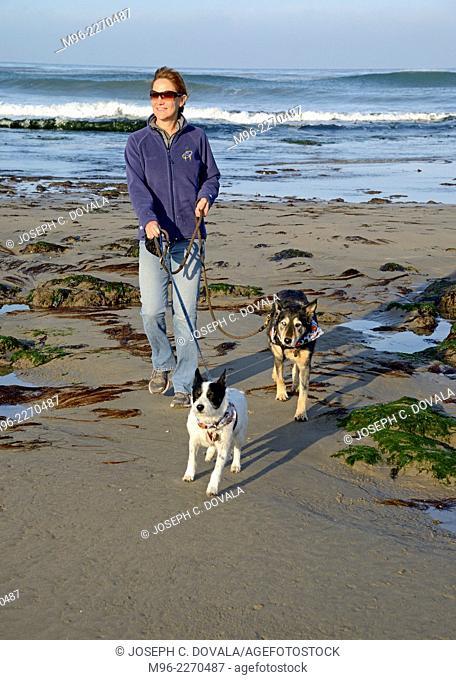 Woman walking dogs, Jalama Beach, California, USA