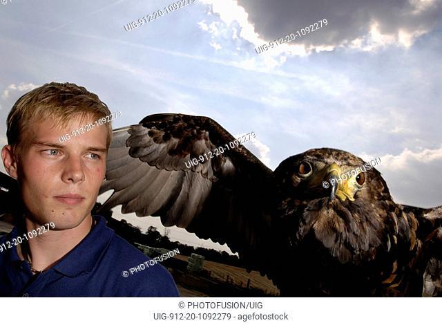 Bateleur Eagle at falconry centre UK