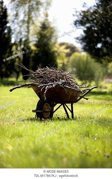 An old wheelbarrow containing twigs