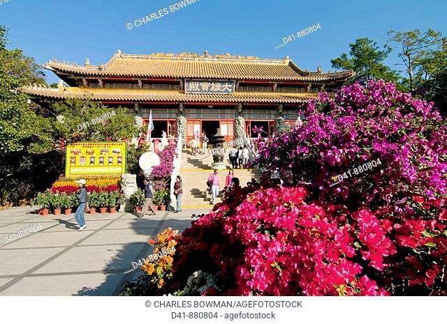 asia, china, hong kong, Lantau, Po Lin monastery 2008