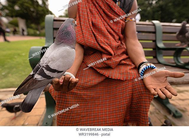 Pigeon perching on maasai man hand