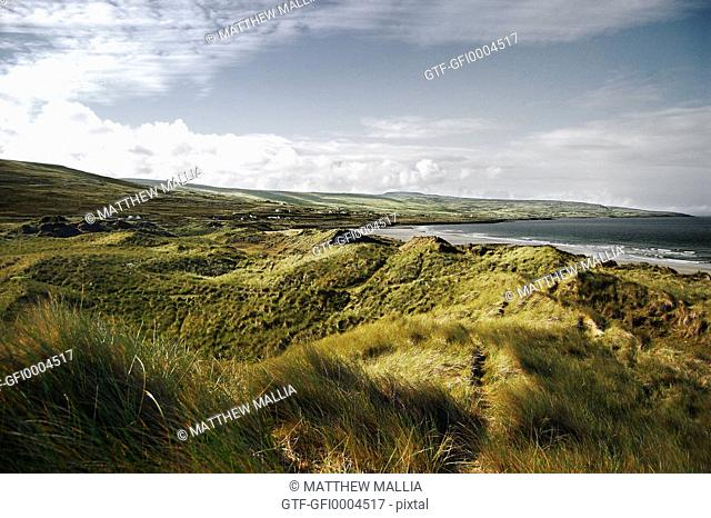 Grass Covered Sand Dunes