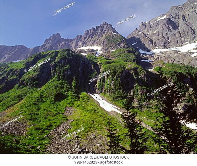 The Triplets left, Cascade Peak center and Johannesburg Mountain right, view from below Cascade Pass, North Cascades National Park, Washington, USA