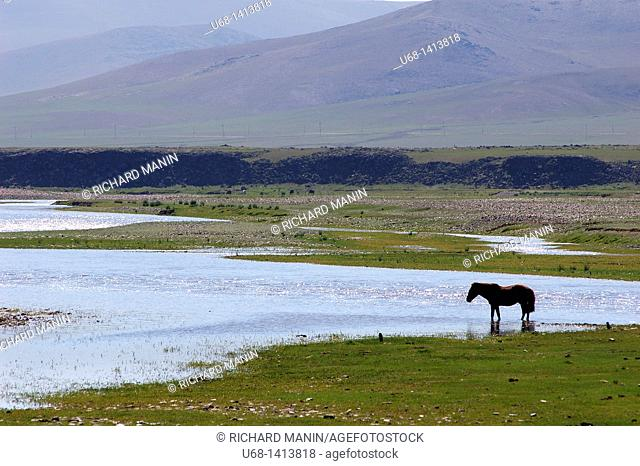 Orkhon River, Orkhon Valley, Ovorkhangai district, Mongolia