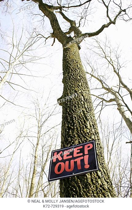 Nailed on a tree a keep out sign is a warning and command