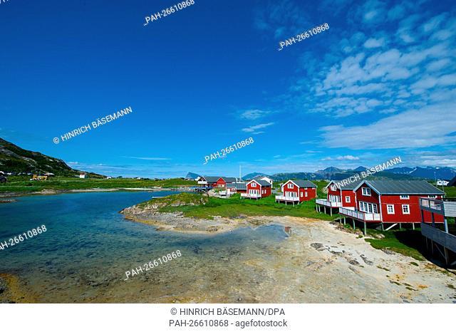 Traumsommer in Nordnorwegen / dream summer in northern Norway | usage worldwide. - /Norway