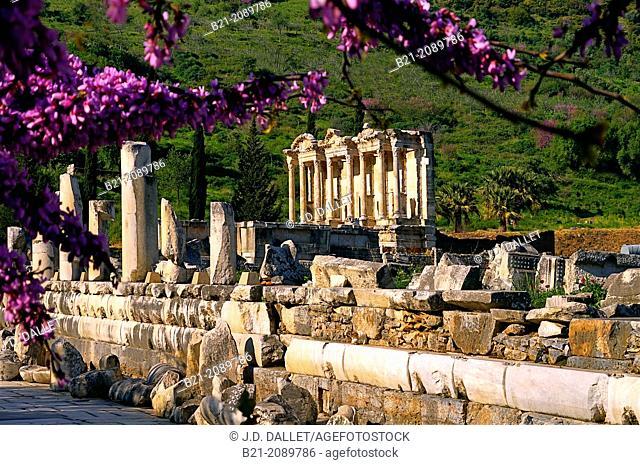 Ruins of Ephesus, Turkey