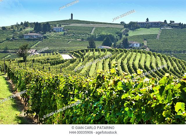 Italy, panorama of vineyards of Piedmont Langhe-Roero and Monferrato on the World Heritage List UNESCO panorama near Canelli Italy, Piedmont, Vineyards