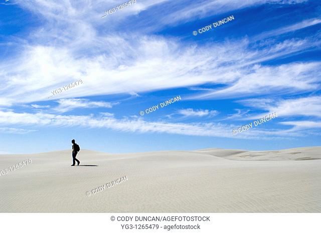 Person walking on dunes, Farewell Spit, New Zealand