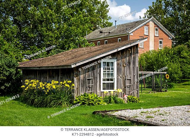 An old shed with yellow lilies in the Amana Colonies, Iowa, USA