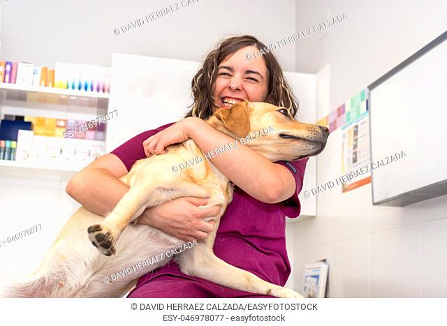 Doctor at the veterinary clinic hugging a beautiful dog