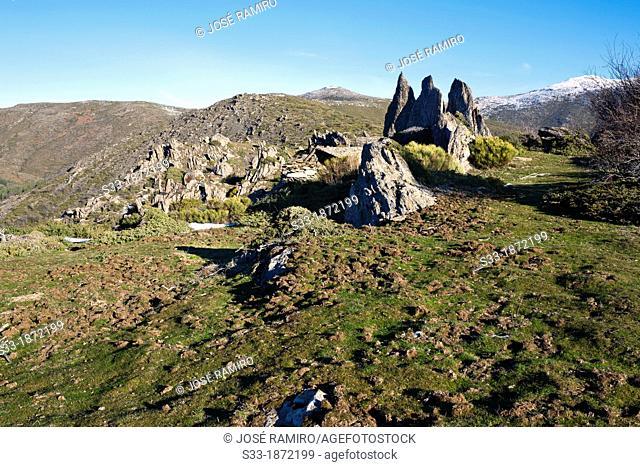 Cliffs in Loma Mediana  Sierra Norte  El Cardoso de la Sierra  Guadalajara  Castilla la Mancha  Spain