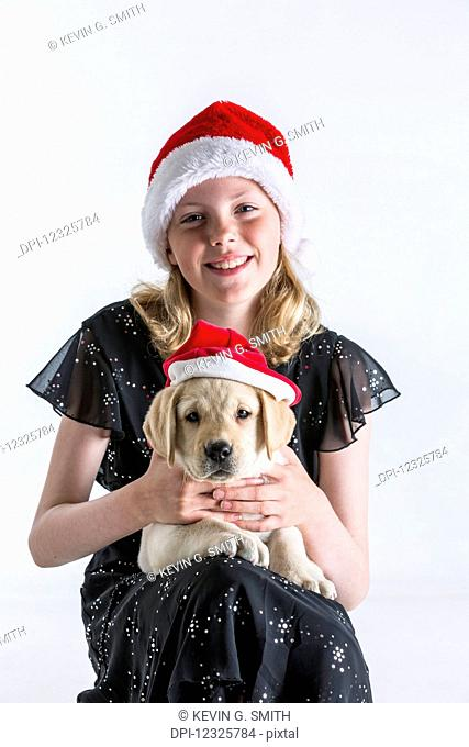 A smiling young girl wearing a santa hat hugs a Labrador puppy also wearing a santa hat against a white background; Anchorage, Alaska, United States of America