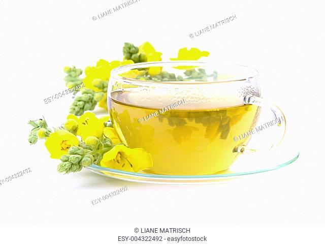 Tee Königskerze - tea mullein 01