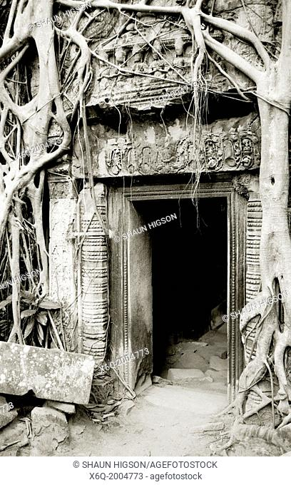 Doorway in Ta Prohm. The Temples of Angkor in Siem Reap in Cambodia in Southeast Asia Far East