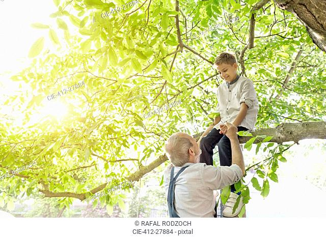 Grandfather helping grandson on tree branch