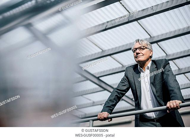 Senior businessman standing at railing