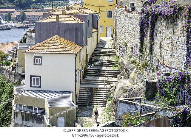 Portugal, Porto, Douro River, Barrio La Ribeira, historic center, city wall, Escadas das Verdades, Stairs of the Truths, buildings, skyline, hillside, flowers